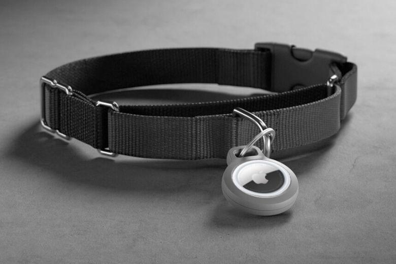 Người dùng sẽ cần phải tự làm dây đeo AirTag cho thú cưng